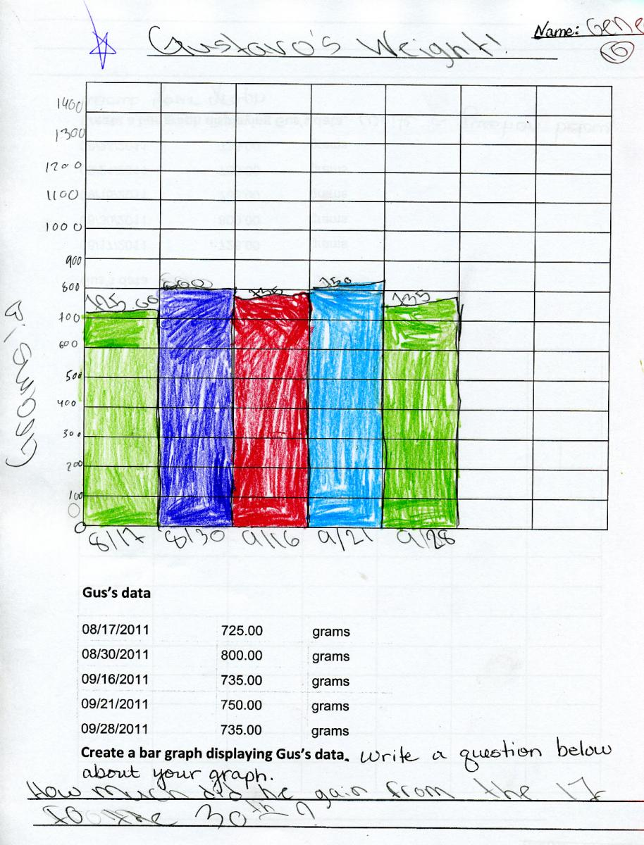 Double Bar Graphs Created double-bar graphs